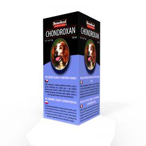CHONDROXAN pies 500 ml