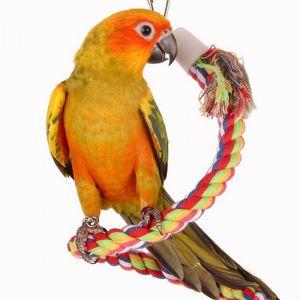 Lina do klatek i wolier dla papug
